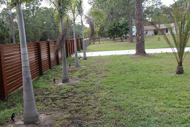 13761 154th Place N Real Estate Property Photo #40