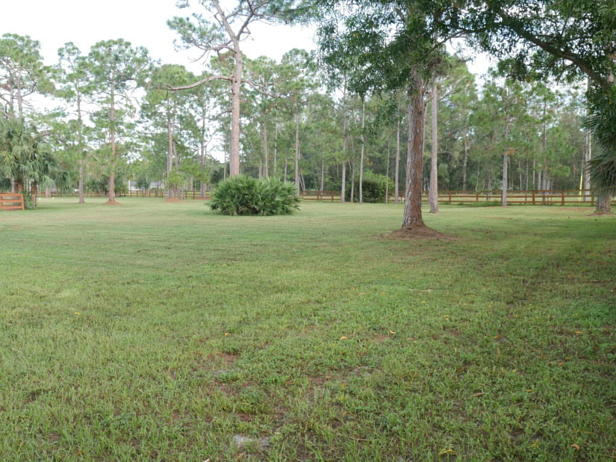 13956 Coco Plum Road  Real Estate Property Photo #24
