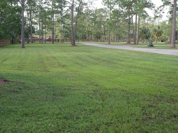 13956 Coco Plum Road  Real Estate Property Photo #25