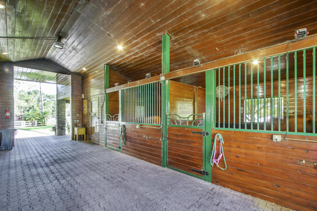14639 Crazy Horse Lane  Real Estate Property Photo #7