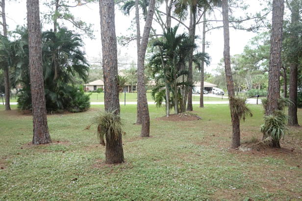 15612 78th Drive N Real Estate Property Photo #10